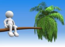 Palm-boom Royalty-vrije Stock Fotografie