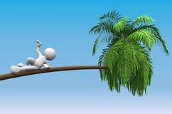 Palm-boom Stock Afbeeldingen