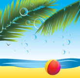 Palm branches with bubbles and beach ball royalty free stock photo