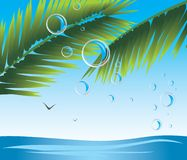 Palm branches with bubbles. Seascape Royalty Free Stock Image