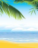 Palm branches on the coastline background. Illustration stock illustration