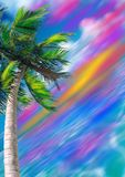 Palm on bright background. Palm tree against the backdrop of sea and sky. At the horizon bright orange and pink luminescence. Background Royalty Free Stock Photos