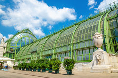 Palm and Butterfly house in Vienna Burggarten, Austria Royalty Free Stock Photography