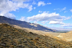 Palm Canyon, Palm Springs Royalty Free Stock Photos