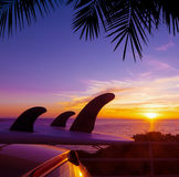 Palm and car with surfboard by the shore at sunset Stock Photos