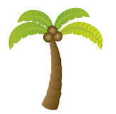 Palm cartoon Stock Images