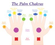 Free Palm Chakras Fingers Symbols Names Both Hands Stock Photos - 137936283