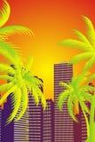 Palm city Stock Photo