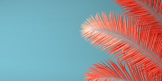 Living Coral color of the Year 2019. Background with palm in trendy color. 3d illustration stock photography