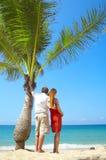 Palm couple Royalty Free Stock Image