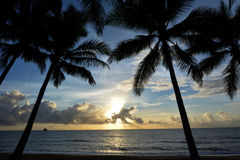 Palm Cove at sunrise Queensland  Australia Stock Photos