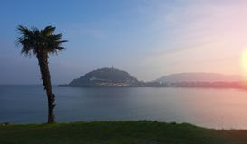 Palm in de Baai van La Concha bij zonsopgang, stad van San Sebastian Stock Fotografie