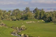 Palm Desert高尔夫球漏洞 免版税图库摄影