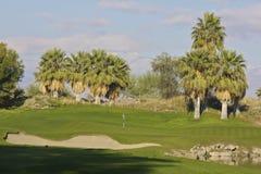 Palm Desert高尔夫球 免版税库存图片