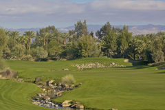 Palm Desert Golf Hole Royalty Free Stock Photography
