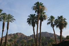 Palm Desert mountains Stock Photos