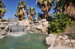 Palm Desert oasis Royalty Free Stock Photography
