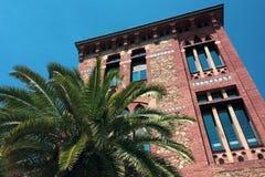 Palm dichtbij het huis royalty-vrije stock fotografie
