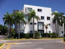 Palm drie van de Dominicaanse Republiek van Puntacana flathuur Royalty-vrije Stock Afbeelding