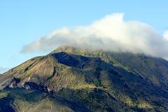 Palm en andere bomen op bewolkte hemel en bergachtergrond royalty-vrije stock afbeelding
