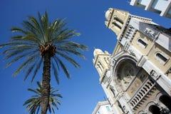 Palm en kathedraal in Tunis stock afbeeldingen