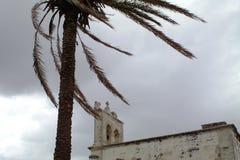 palm en kerk met slecht weer in het historische centrum van Otranto - Italië Royalty-vrije Stock Foto's