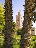 Palm en moskee Koutoubia Royalty-vrije Stock Fotografie