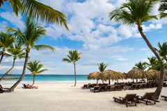 Palm en tropisch strand in Tropisch Paradijs. Zomer holyday in Dominicaanse Republiek, Seychellen, de Caraïben, Filippijnen, Baham Stock Fotografie