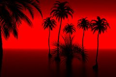 Palm en zonsondergang royalty-vrije illustratie