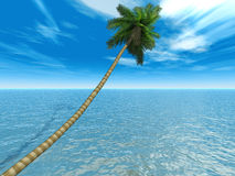 Palm on an exotic tropical bea. Ch on a background clear sky and blue transparent ocean stock illustration