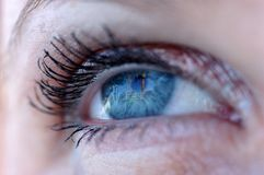 Palm in Eye stock images