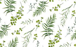 Palm fern different tree foliage natural branches with green lea. Ves seeds berries tropical seamless pattern, watercolor style. Vector decorative beautiful cute Royalty Free Stock Image