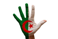palm flag algeria Stock Image