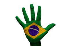 Palm flag brazil Royalty Free Stock Images