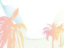 Palm flow Stock Image