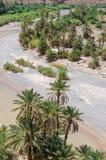 Palm fodrade torr flodsäng nära Tiznit i Marocko, Nordafrika royaltyfria bilder