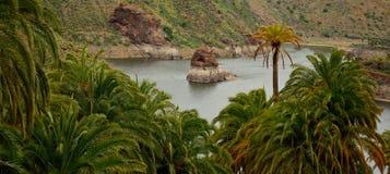Palm forest and rainwater dam. La sorrueda, Santa lucia, Gran canaria Stock Photos
