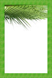 Palm frame paper Royalty Free Stock Photo