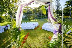 Palm-fringed Wedding Arch in Lush Tropical Garden with Flamboyant Trees stock image