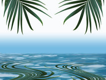 Palm frond leaf with blue water and reflection with copy space Royalty Free Stock Image