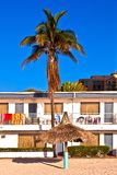 Palm in front of Motel at the beach Royalty Free Stock Photos