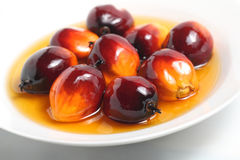 Palm fruit and cooking oil stock image