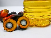 Palm fruits and palm oil, one fruit is cut to show its kernel Royalty Free Stock Images