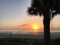 A Palm Full of Sunrise. Ponce Inlet Sunrise stock photo