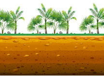 Palm garden on the ground in seamless design royalty free illustration