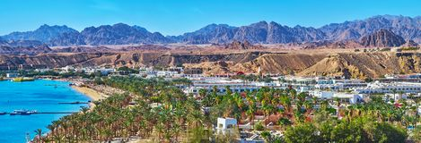 Tourist districts of Sharm El Sheikh, Egypt. The palm gardens of Sharm El Maya district, located on the same named bay in Sharm El Sheikh - the most popular royalty free stock image