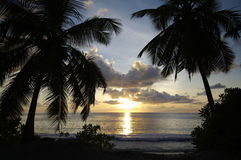Palm gevoerd strand Anse Takamaka bij zonsondergang, Seychellen Stock Foto's