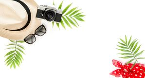 Palm green leaves sunglasses photo camera Summer background. Palm green leaves, sunglasses, photo camera. Summer background banner Royalty Free Stock Photo