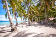 Palm grove on the sandy tropical beach with family Royalty Free Stock Photo