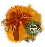 Palm grunge. Palm trees and drums on the grunge background Royalty Free Stock Images